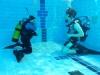 www.dive-together.de-Schwimmbadausbildung-001